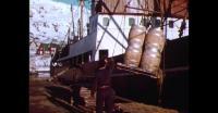 Unloading supply ship in Qaqortoq