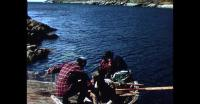 Fish drying in Southern Greenland